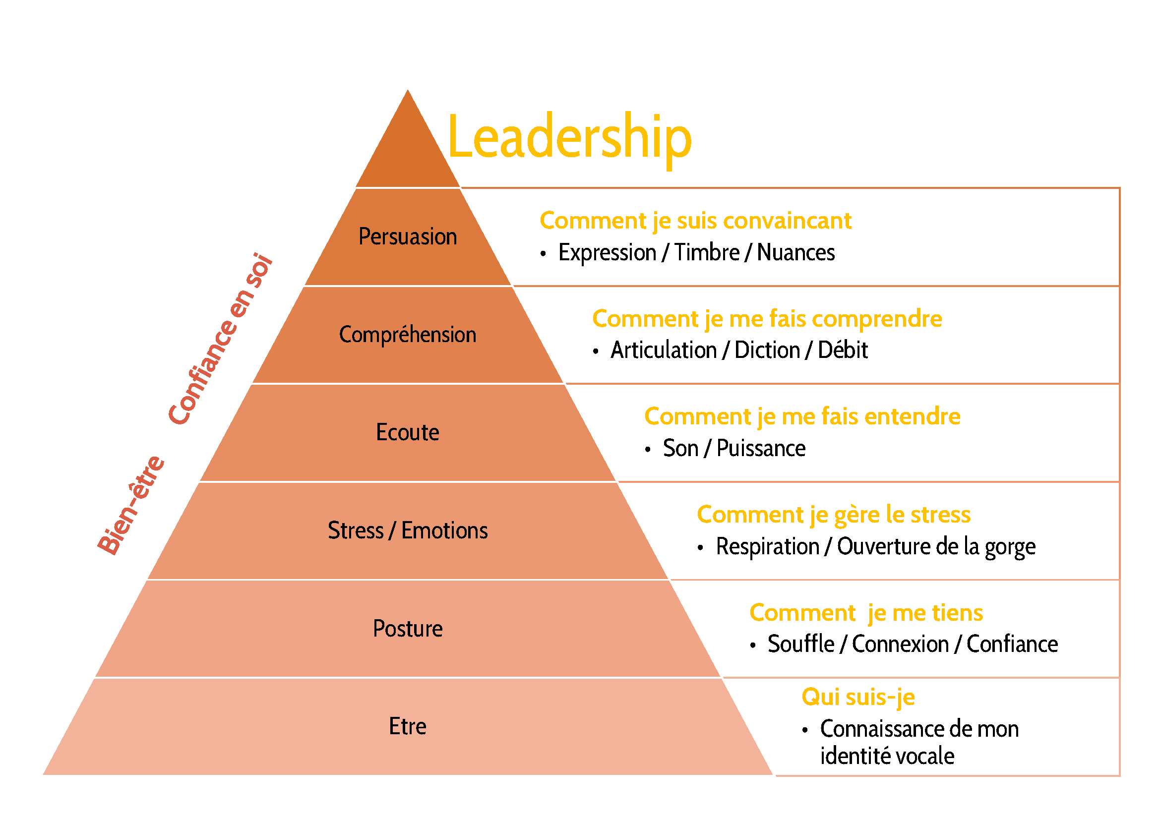 optimamox-pyramide
